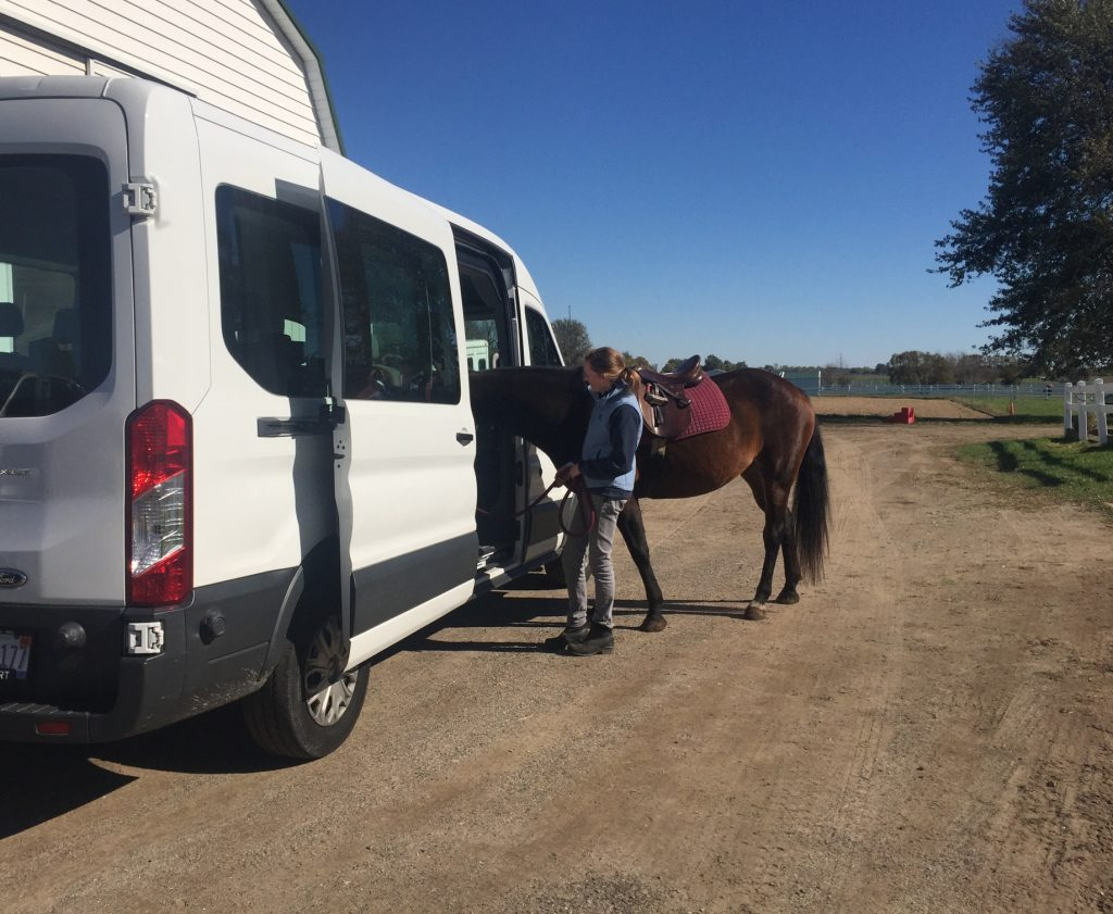 Horse and person standing next to a van